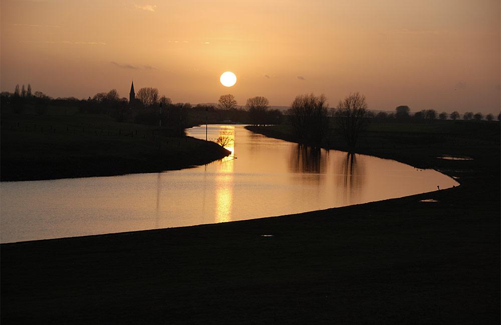 2012-1-Rietje-Cathelijne-begin-maart-11